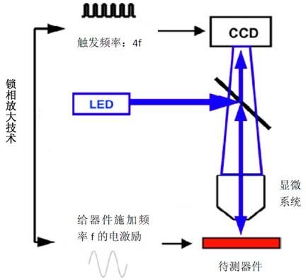 显微系统以及ccd摄像头